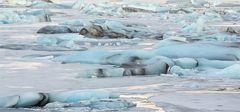 In der Gletscherlagune