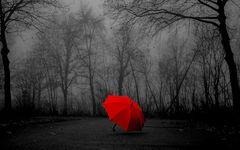 In der grauen, nebeligen und dunklen Zeit, ein Farbklecks (tagesaktuell von heute morgen 10:00 Uhr)