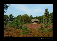 In der Heide
