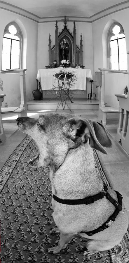 In der Kapelle ...