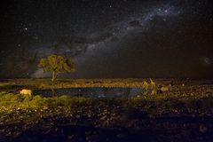 in der Nacht