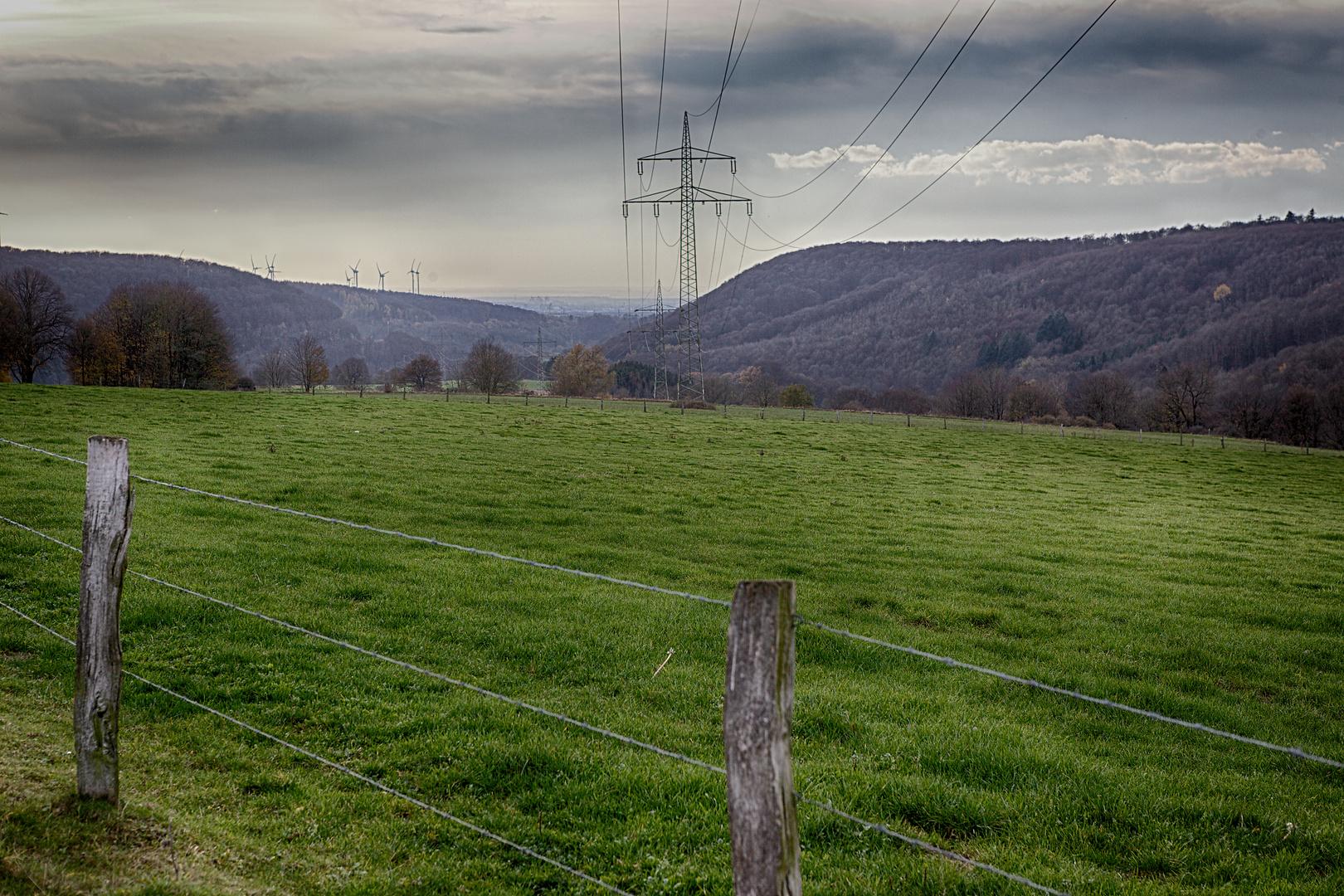 In der Natur unter Strom