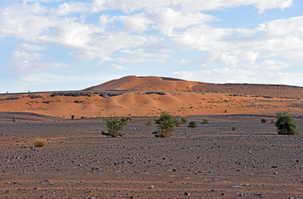 In der Sahara bei Tafraout Hassi Fougani im Süden Marokkos