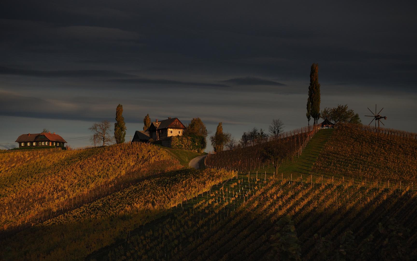 In der Steirischen Toskana