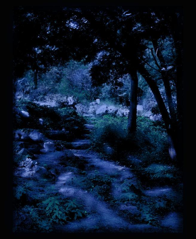 in der Stille der Nacht...