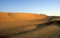 In der Wahiba Sands im Oman