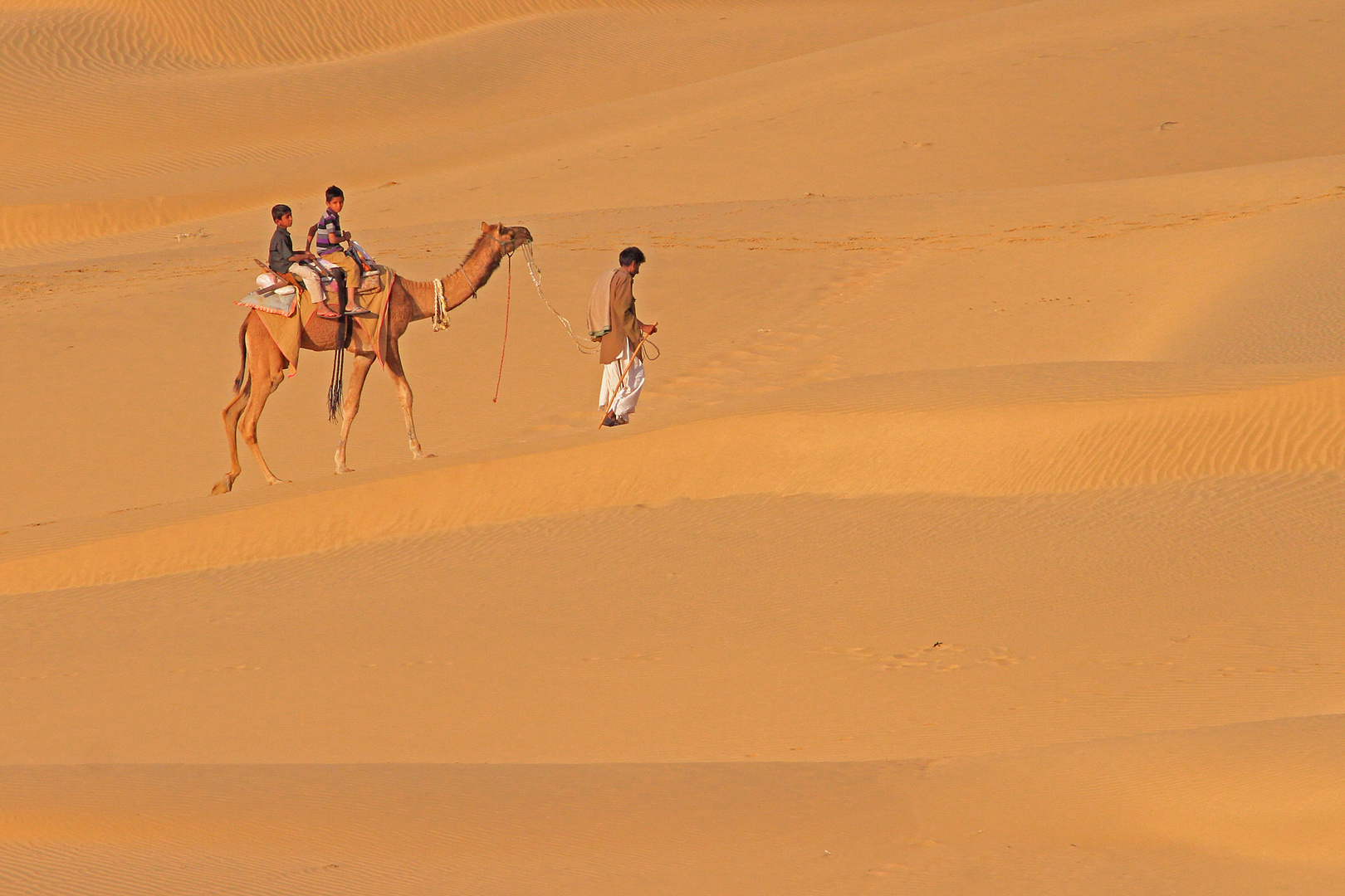 In der Wüste Thar, Rajasthan