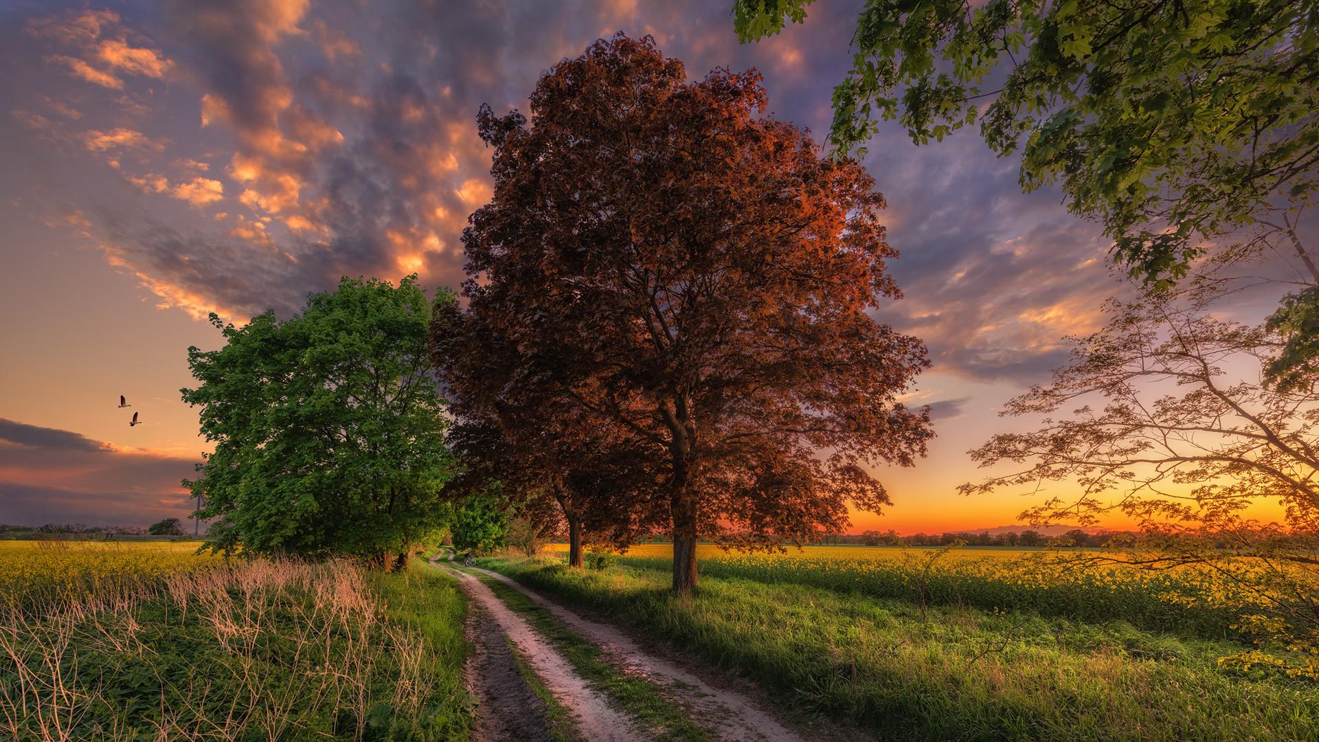 In die Natur ist ein Geheimnis der Liebe eingebaut.
