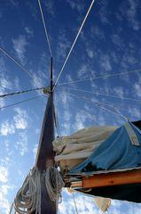 in die Welt segeln