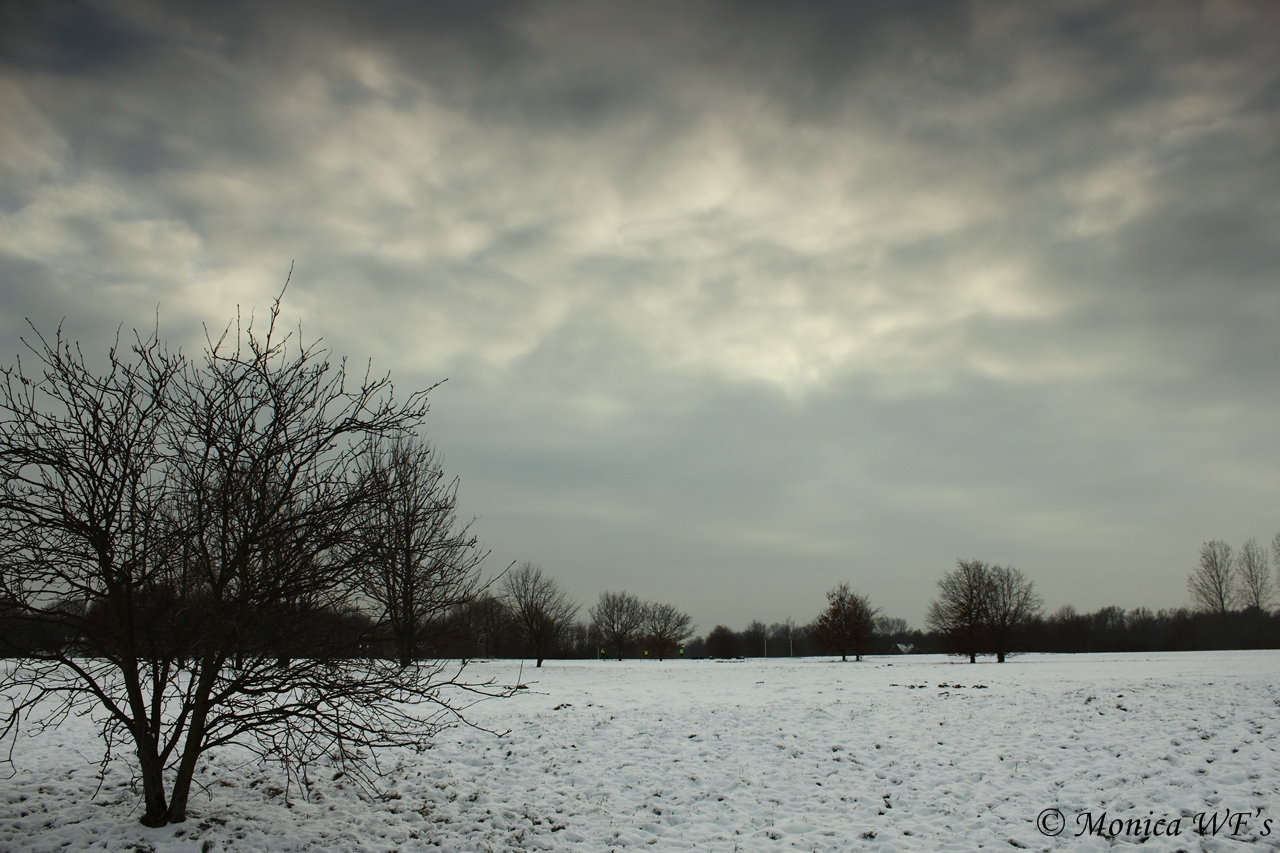 In einem trüben Winter Nachmittag