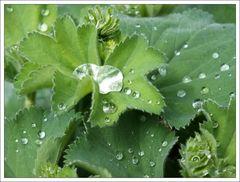In einer kurzen Regenpause ...