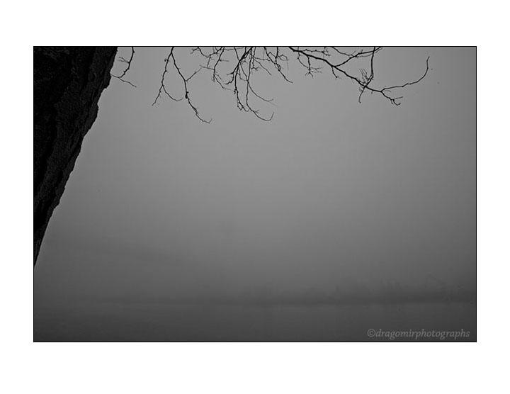 In Fog 3