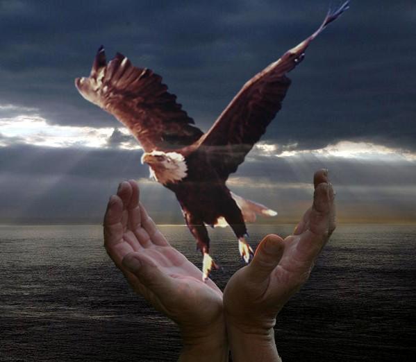 In Gods Hands