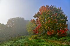 In Herbststimmung