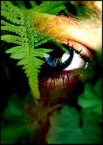 ...in jungle...