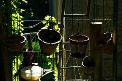 in Karins Garten