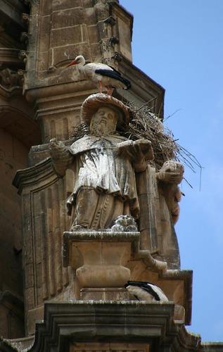 In luftiger Höhe baut der Storch ...
