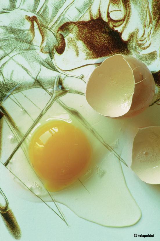 In mezzo guscio d'uovo