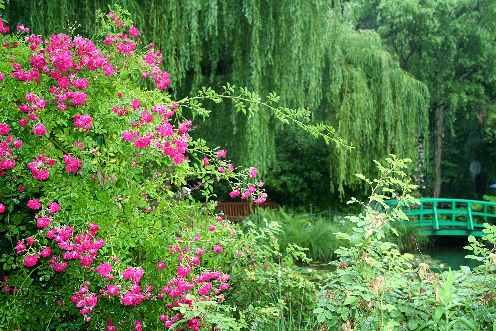 In Monets Garten