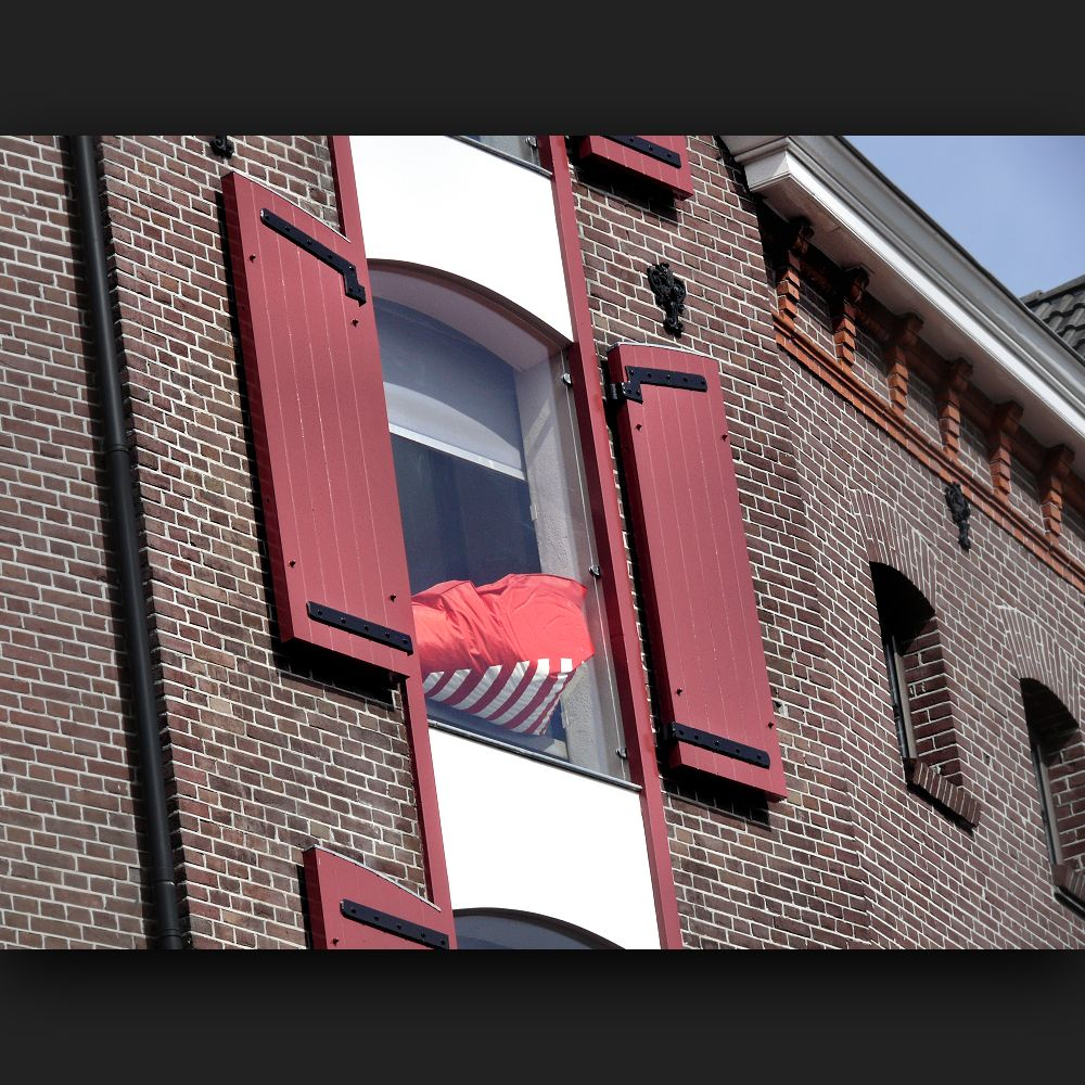 ... in one window with shutters