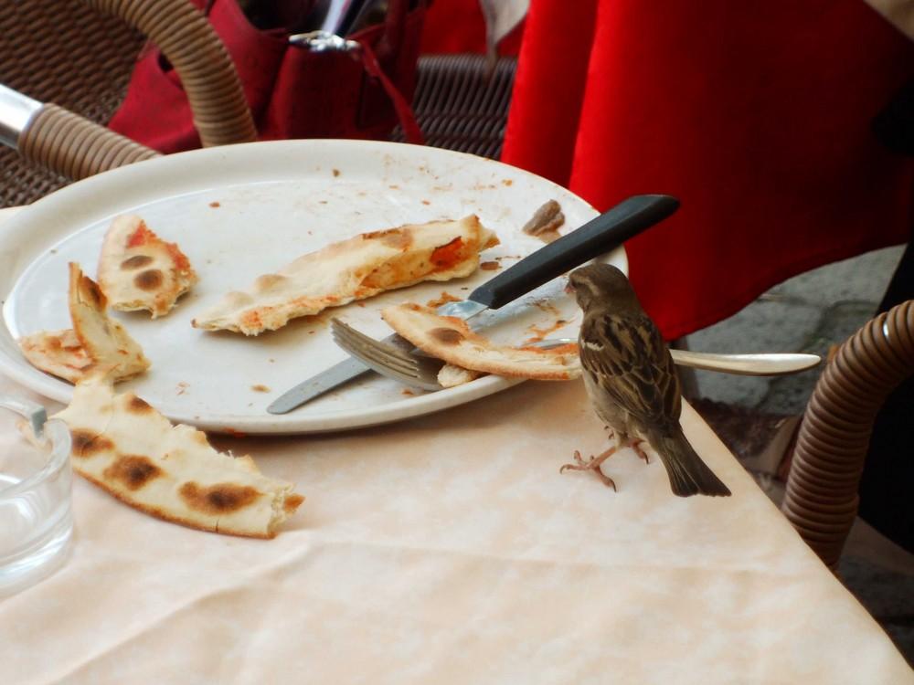 In pizzeria a Venezia