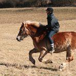 In schnellem Gallop dem Frühling entgegen.....