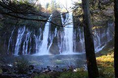 In schwierigem Licht präsentieren sich die McArthur - Burney Falls....