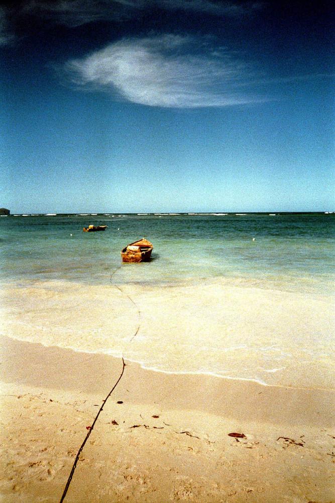 ..in solitaria.. (samanà-rep.dominicana)