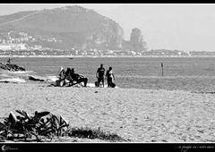 ...in spiaggia con i nostri amici