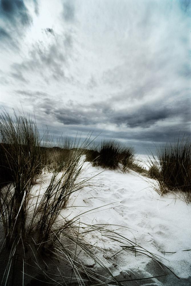 In the dunes 2