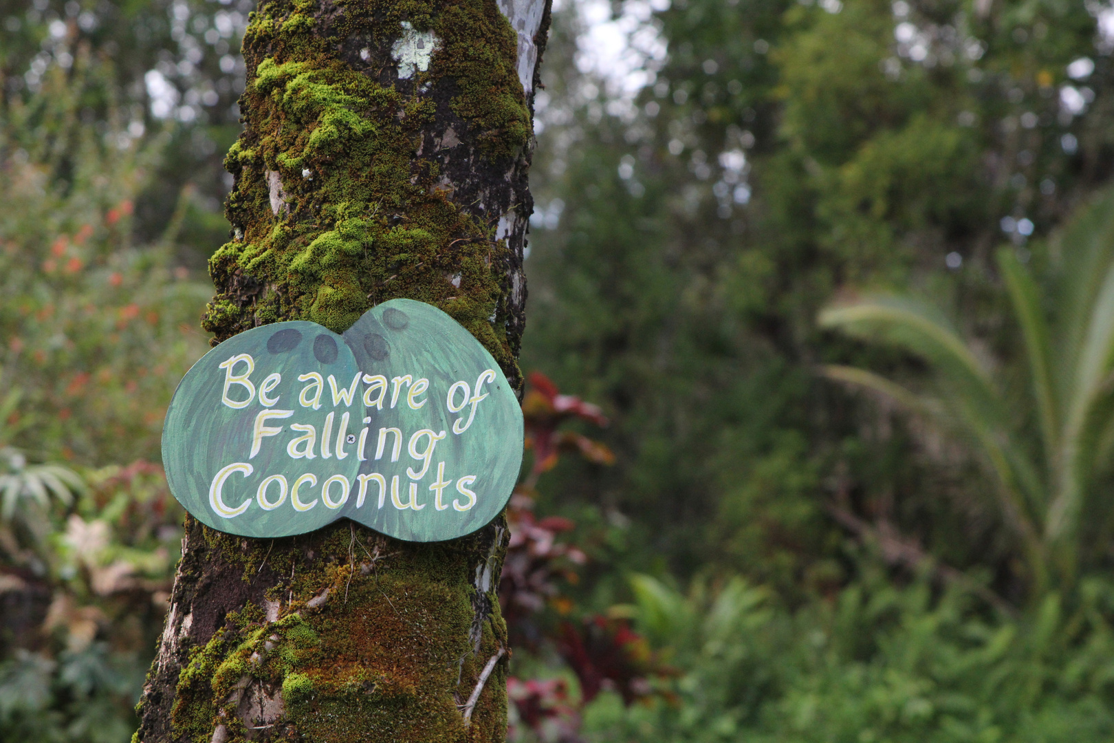 In the garden of our rainbow retreat center