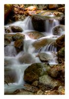In the mountain stream-2