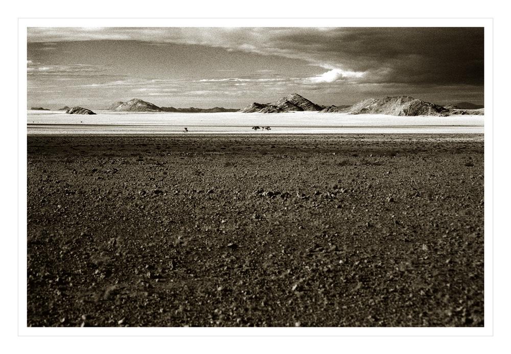 In the Namib