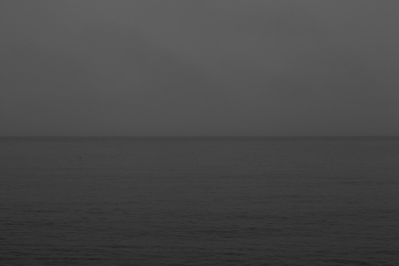 In the sea - 4