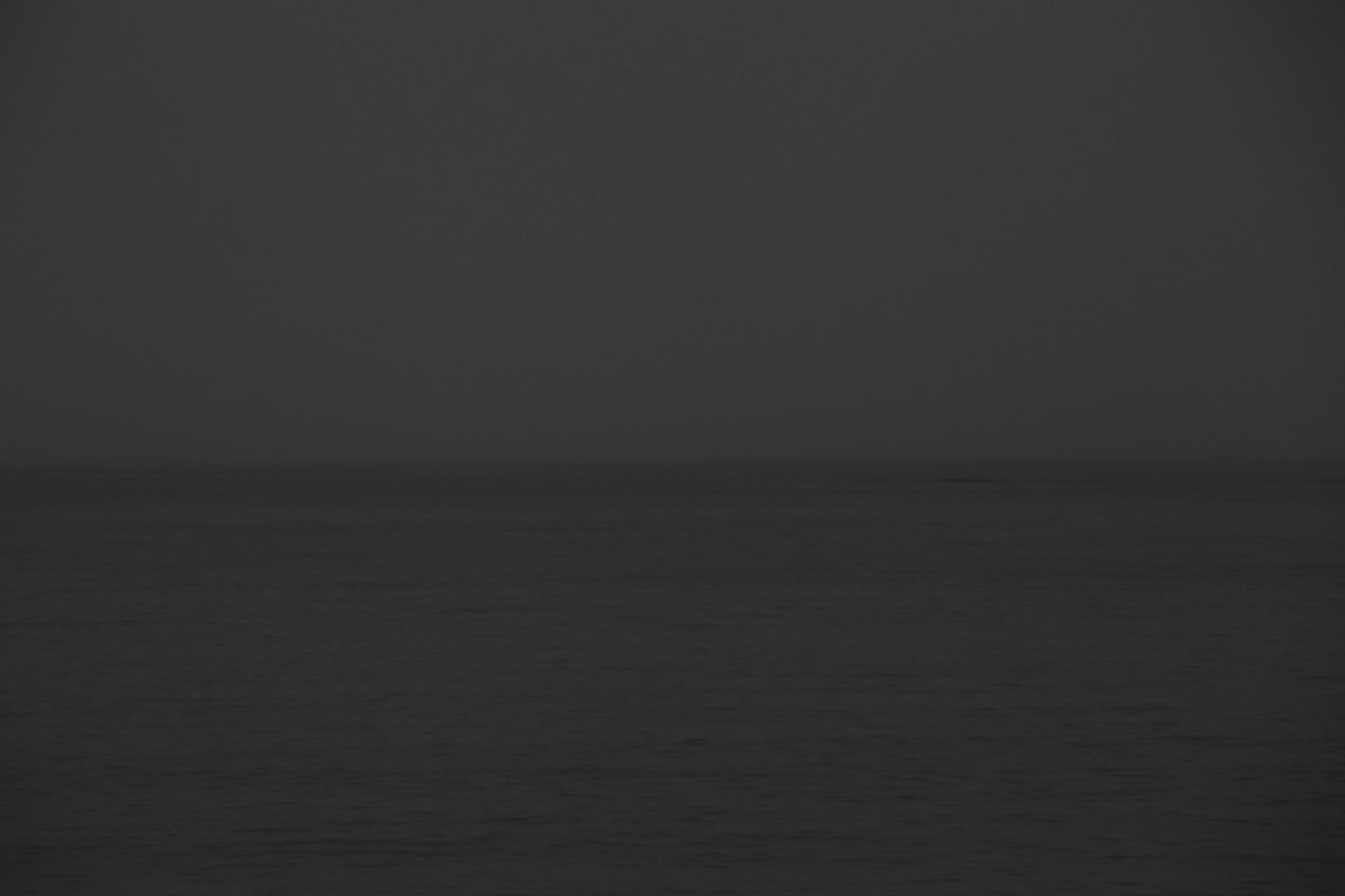 In the sea - 5
