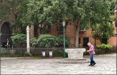 In Venezia ci sono alberi.