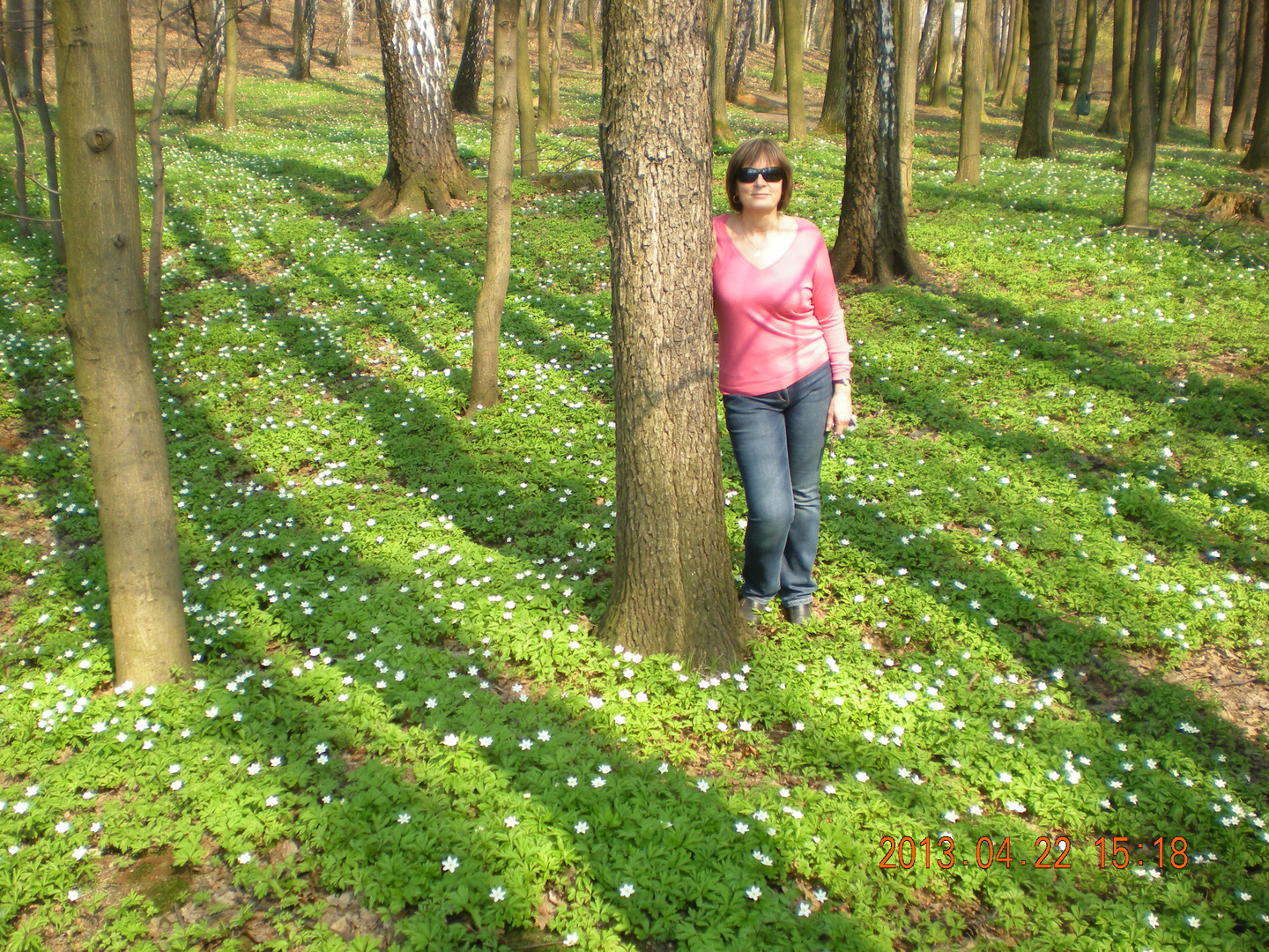 In Wald