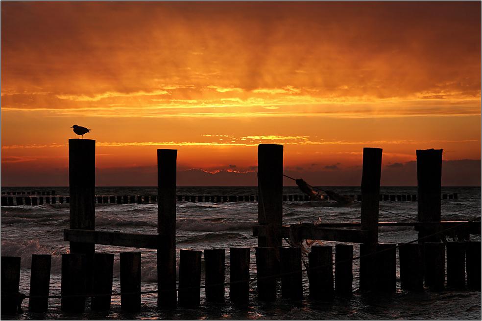 In Zingst geht die Sonne unter... (4)