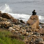Incantato ad ascoltare il mare