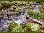 Inchewan Burn - Birnam Glen #01