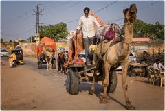 India on the Road #4