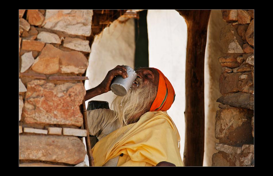 indian milkdrinker