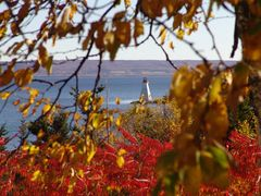 Indian Summer am Bras dor Lake Nova Scotia