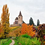 Indian Summer in Hunawihr, Alsace