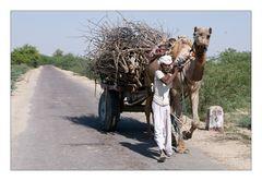 Indian Transport II