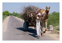 Indian Transport IIa