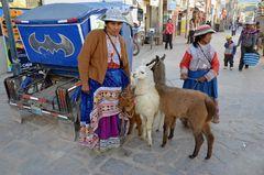 Indianerfrauen mit ihren Alpakas in Chivay