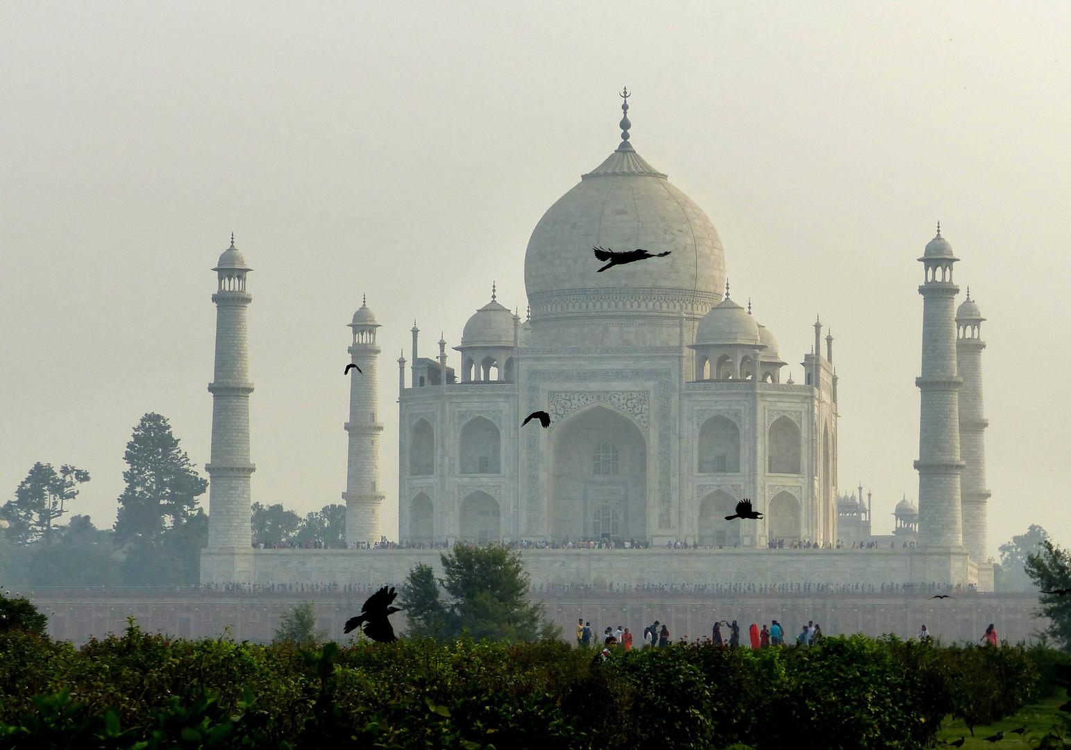 Indien 12b: mystischer Taj Mahal (Rückseite). Agra 2018