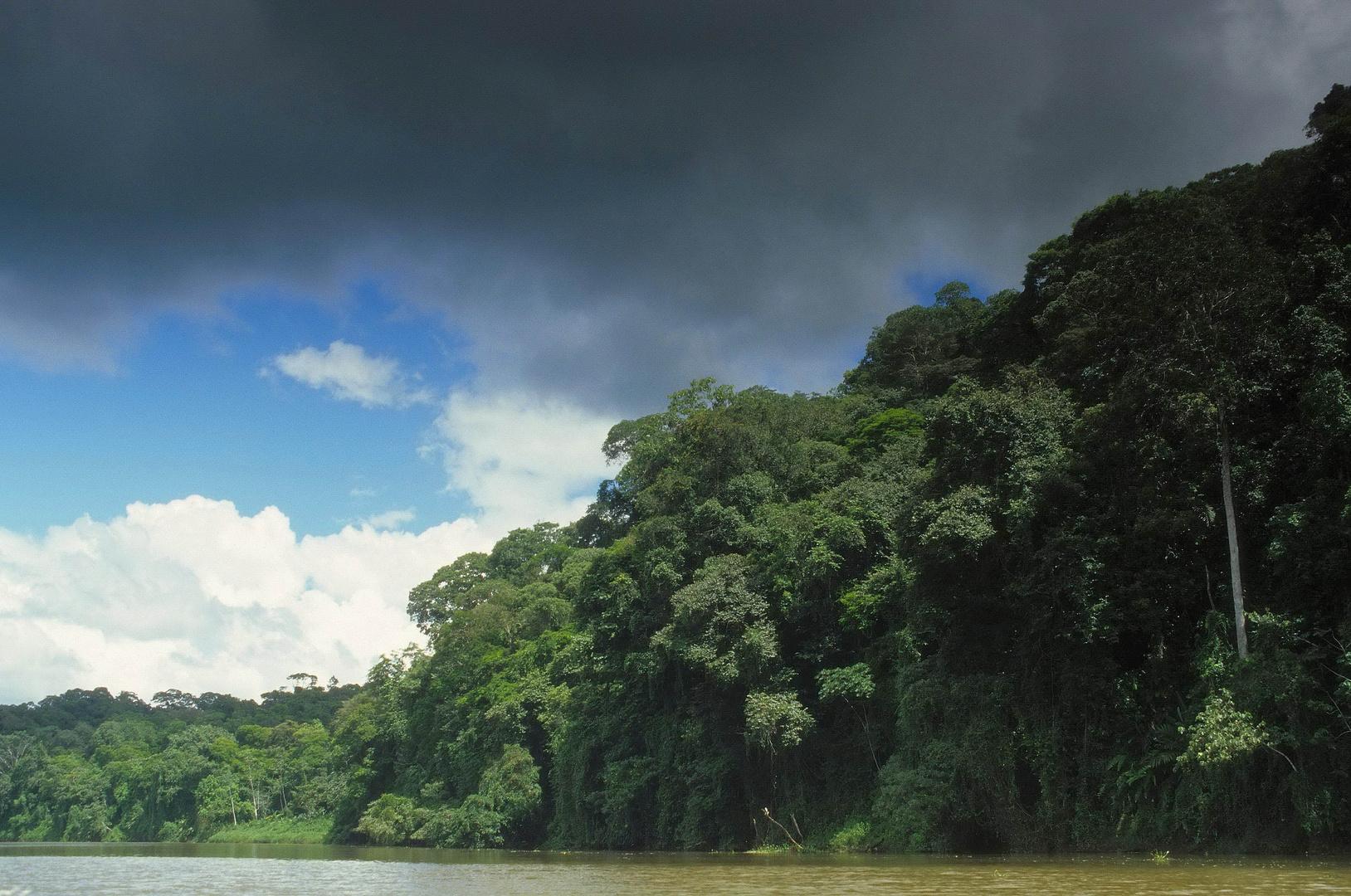Indio Maiz - Biosphärenreservat