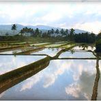 INDONESIE - 39- Ile de Bali